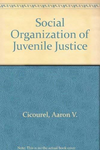 9780435821715: Social Organization of Juvenile Justice