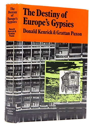9780435821920: Destiny of Europe's Gypsies (Columbus Centre)