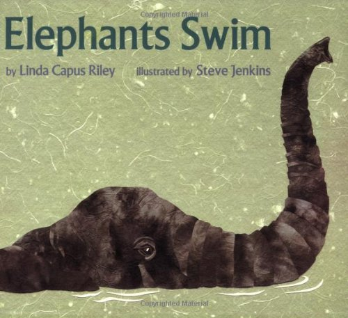 9780439065719: Elephants Swim