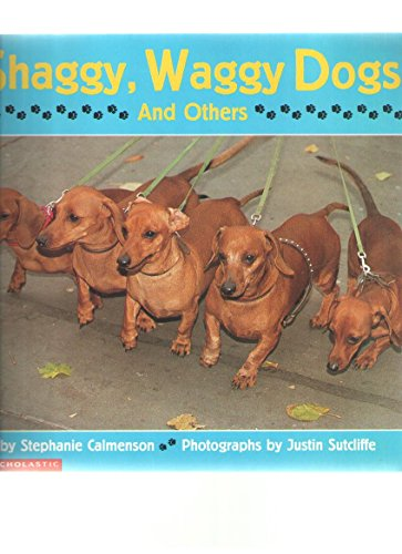 9780439084154: Shaggy, Waggy Dogs and Others