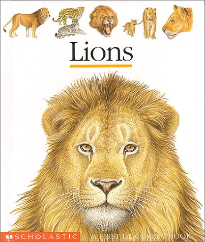 9780439148252: Lions (First Discovery Books)