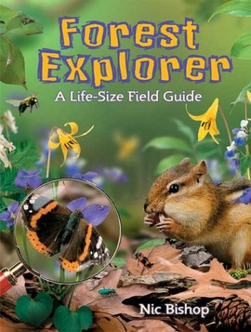 9780439174800: Forest Explorer: A Life-sized Field Guide