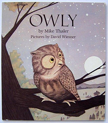 9780439188586: Owly