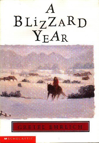 9780439221993: A Blizzard Year