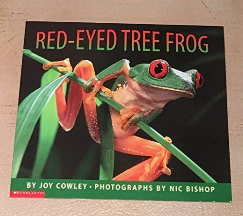 9780439227827: Red-Eyed Tree Frog
