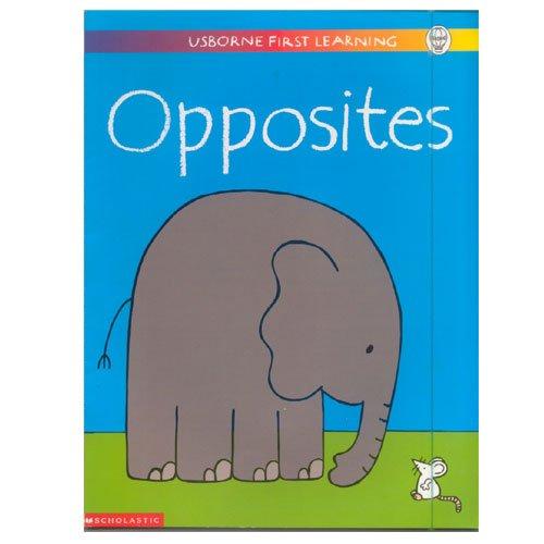 9780439332378: Opposites