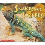 9780439411639: Snakes and Lizards/serpientes Y Lagartos (English/Espanol)