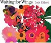 9780439539456: Waiting for wings