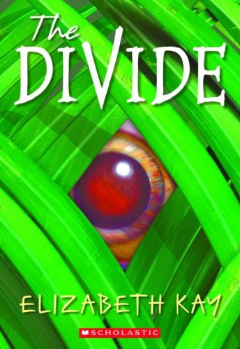 9780439543439: The Divide