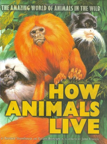 9780439548342: How Animals Live: Amazing World of Animals in the Wild, the