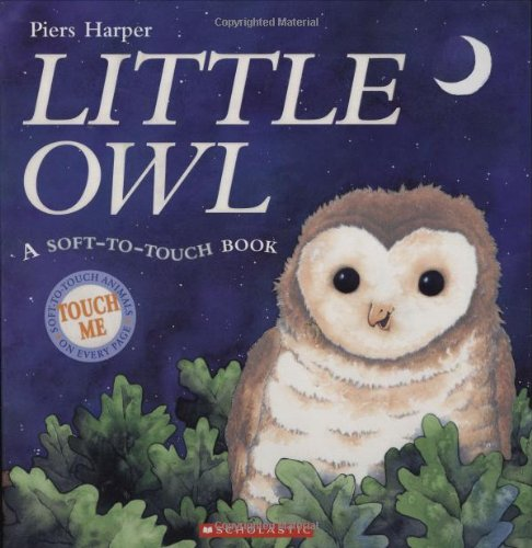 9780439597036: Little Owl
