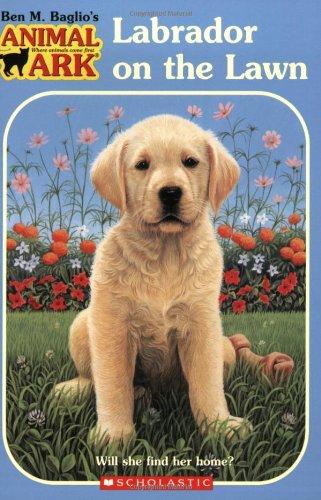 9780439684880: Labrador on the Lawn (Animal Ark Holiday Treasury #1) (Animal Ark Series #38)
