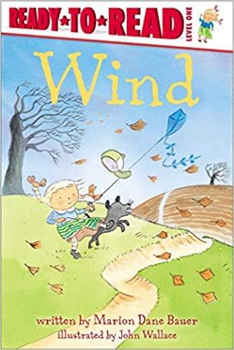 9780439711234: Wind