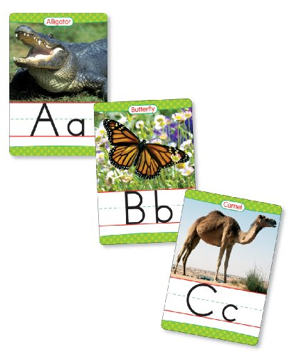 9780439786041: Animals from A to Z Alphabet Set: Manuscript: 26 Ready-To-Display Letter Cards with Fabulous Photos of Animals