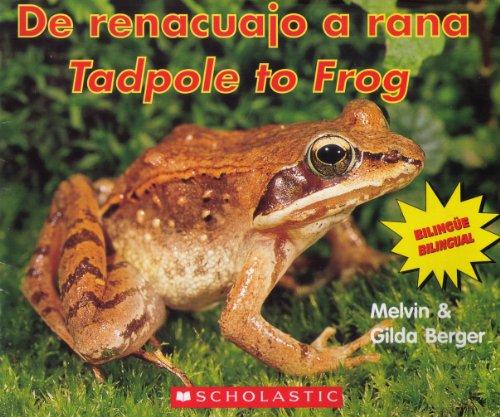 9780439828642: De Renacuajo a Rana/ Tadpole to Frog