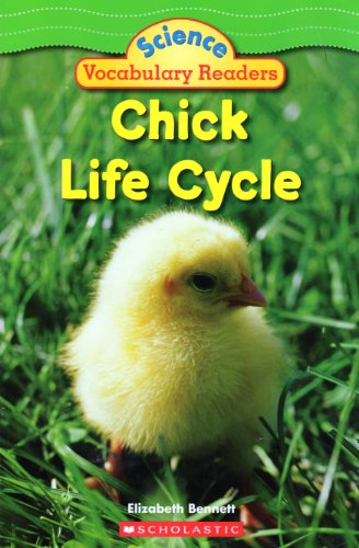 9780439876582: Chick Life Cycle