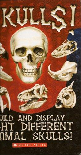 Heads Up!: A Look Inside Skulls: Beck, Paul