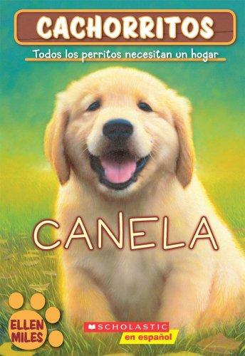 9780439883504: Canela / Goldie