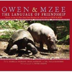 9780439930543: Owen & Mzee: The Language of Friendship