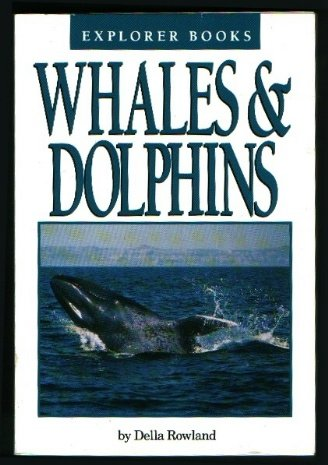 9780440843511: Whales & dolphins (Explorer books)