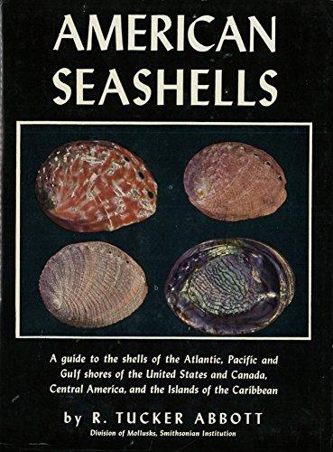 9780442002176: American Seashells