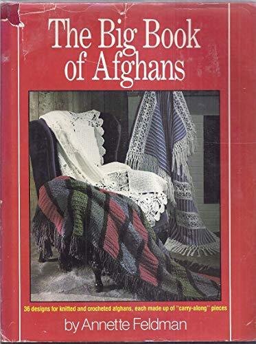 9780442225285: Big Book of Afghans