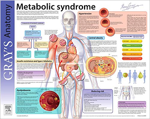 9780443067761: Metabolic Syndrome: Gray's Anatomy Poster Series, 1e