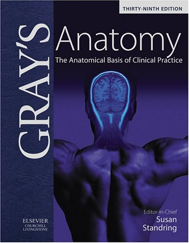 9780443071683: Gray's Anatomy: The Anatomical Basis of Clinical Practice, 39e