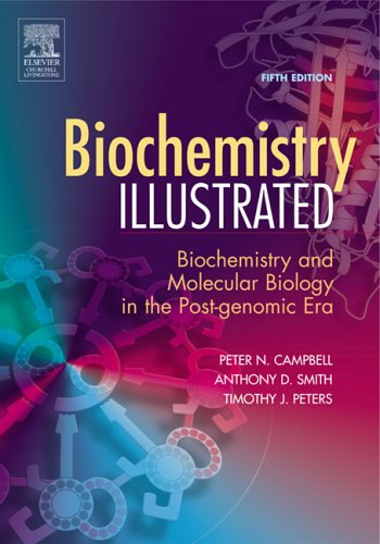 9780443100345: Biochemistry Illustrated: Biochemistry and Molecular Biology in the Post-Genomic Era