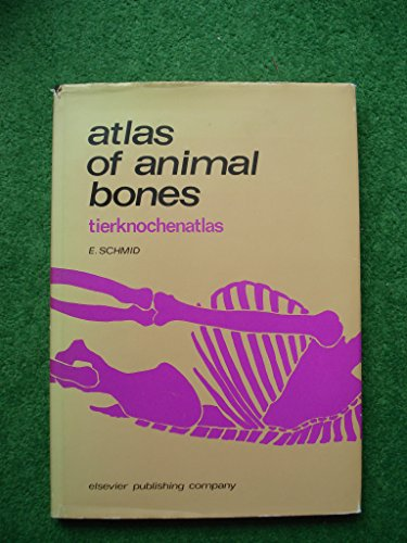 Atlas of Animal Bones: For Prehistorians, Archaeologists and Quaternary Geologists (English and ...