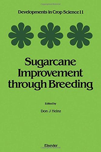 9780444427694: Sugarcane Improvement Through Breeding (DEVELOPMENTS IN CROP SCIENCE)
