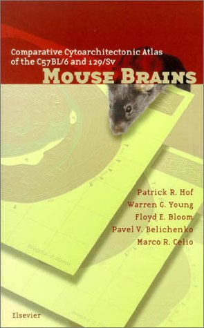 9780444501943: Comparative Cytoarchitectonic Atlas of the C57BL/6 and 129/Sv Mouse Brains with CD ROM, 1e