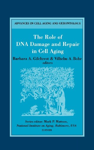9780444504944: The Role of DNA Damage and Repair in Cell Aging, Volume 4 (Advances in Cell Aging and Gerontology)