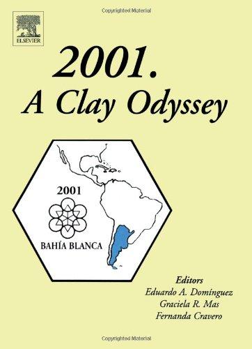 9780444509451: 2001. A Clay Odyssey