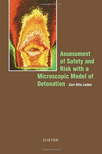 9780444513328: Assessment of Safety and Risk with a Microscopic Model of Detonation