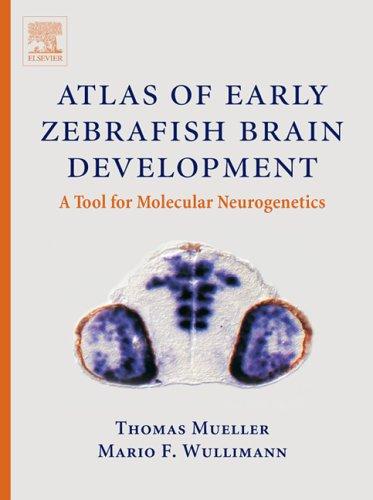 9780444517388: Atlas of Early Zebrafish Brain Development: A Tool for Molecular Neurogenetics