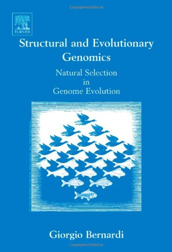9780444521361: Structural and Evolutionary Genomics, Volume 37: Natural Selection in Genome Evolution (New Comprehensive Biochemistry)