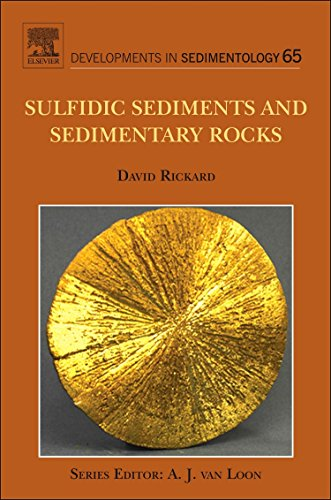 9780444529893: Sulfidic Sediments and Sedimentary Rocks, Volume 65 (Developments in Sedimentology)