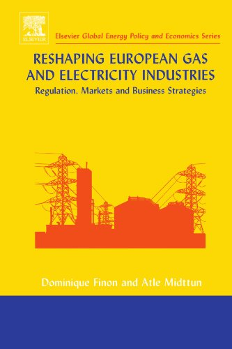9780444544780: Reshaping European Gas and Electricity Industries