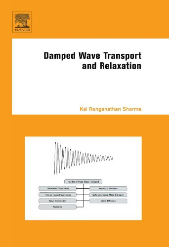 9780444545909: Damped Wave Transport and Relaxation