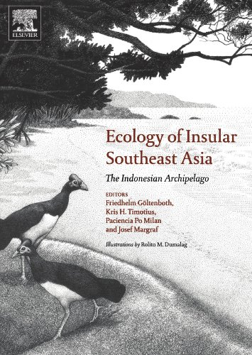9780444546067: Ecology of Insular Southeast Asia: The Indonesian Archipelago