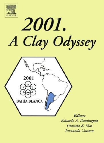 9780444546678: 2001. A Clay Odyssey