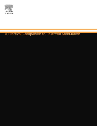 9780444556004: A Practical Companion to Reservoir Stimulation