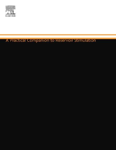9780444556004: A Practical Companion to Reservoir Stimulation