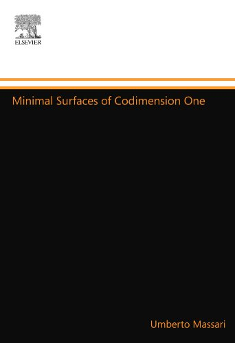 9780444557810: Minimal Surfaces of Codimension One