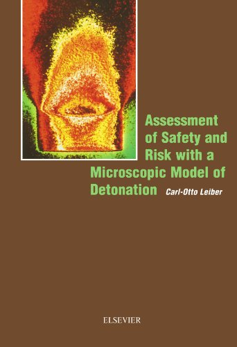 9780444560544: Assessment of Safety and Risk with a Microscopic Model of Detonation