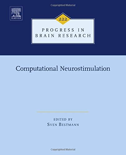Computational Neurostimulation (Hardback)
