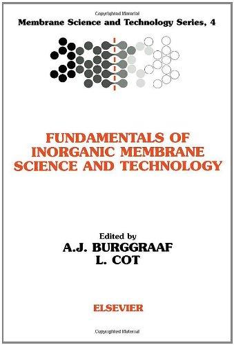 Fundamentals of Inorganic Membrane Science and Technology (Hardback)