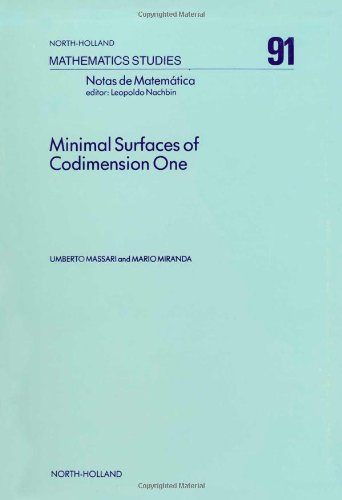 9780444868732: Minimal Surfaces of Codimension One (North-Holland Mathematics Studies ; 91)