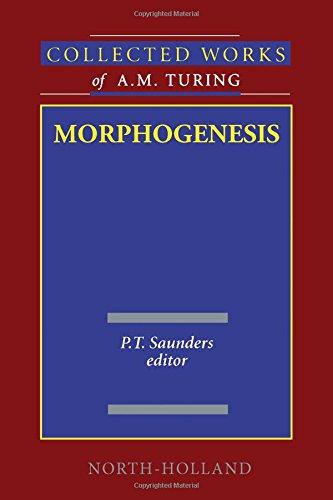 9780444884862: Morphogenesis: Volume 3